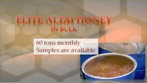 Elite Altai Honey in bulk